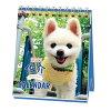 犬俊介ポメラニアン週めくりミニ2022カレンダー卓上スケジュールいぬドッグAPJかわいい動物写真書き込み令和4年暦メール便可シネマコレクション