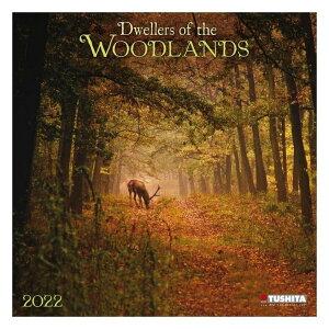 壁掛け 2022年 カレンダー WOODLANDS 森林 TUSHITA アニマル 写真 インテリア 令和4年暦 シネマコレクション 21clsc