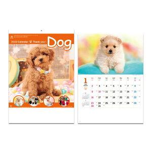 サンキュー ドッグ 2022年 カレンダー 壁掛けカレンダー2022年 スケジュール いぬ 新日本カレンダー 実用 書き込み インテリア 令和4年 暦 予約 シネマコレクション