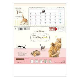 2022年 カレンダー 壁掛け ねこの気ままな3ヶ月 上から順タイプ トーダン 動物 写真 実用 書き込み 令和4年暦 シネマコレクション 21clsc