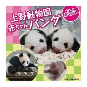 上野動物園赤ちゃんパンダ 2022年 カレンダー 壁掛けカレンダー2019年 トライエックス 動物 写真 令和4年暦 シネマコレクション