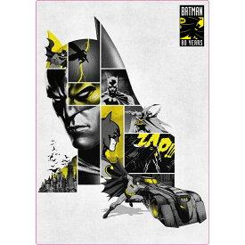 バットマン 80YEARS 両面 シタジキ 下敷き 80周年記念 DCコミック インロック 文具 コレクション 雑貨 キャラクターグッズ メール便可 シネマコレクション