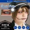 エスカ ホラーコンタクトレンズ ゴーストホワイト Ghost White ES003(1枚入)度あり・度なし|狼やハスキーのような冷…