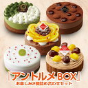 アントルメBOX ケーキ 詰め合わせ セット スイーツ フルーツケーキ サンクドノア 12cm...
