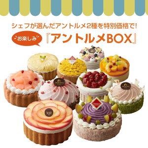 アントルメBOX ケーキ 詰め合わせ セット スイーツ フルーツケーキ サンクドノア 12cm【アントルメセレクション】 誕生日 ギフト 洋菓子 高級 焼菓子 内祝い お返し 入学祝い 贈り物 バースデ