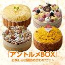 アントルメBOX ケーキ 詰め合わせ セット スイーツ フルーツケーキ サンクドノア 12cm【アントルメセレクション】 誕…