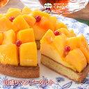 母の日【送料無料】『山盛りマンゴータルト』 サンクドノア ギフト スイーツ タルト ケーキ 洋菓子 食べ物 グルメ 高…
