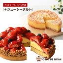 【期間限定ポイント5倍】『フロマージュ+ONE・ジューシータルト』 サンクドノア 【送料無料】 誕生日 ギフト 洋菓子 …