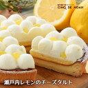 瀬戸内レモンのチーズタルト【送料無料】 サンクドノア ギフト スイーツ タルト ケーキ チーズケーキ 洋菓子 食べ物 …