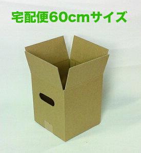 ダンボールケース 無地 60サイズ 10枚入り 宅配ボックス 引越し 輸送用 プリザーブド ソープフラワー アレンジメント 段ボール 収納ケース