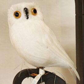 プエブコ PUEBCO ARTIFICIAL BIRDS バードオブジェWhite Owl白フクロウSサイズ横向き /107073