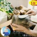 [猫 まっしぐら] 猫 ブラシ 猫用 グルーミングツール スティック ねこ ペピイオリジナル ペット グッズ キャット + …