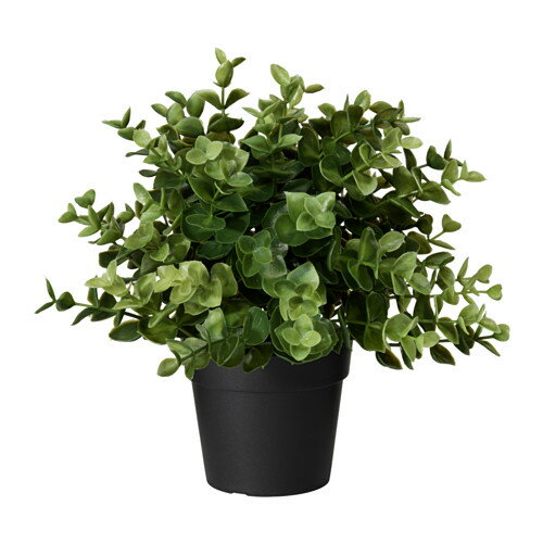 IKEA(イケア) FEJKA人工観葉植物 オレガノ z60375166