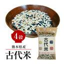熊本産 古代米 4穀 200g 赤米 黒米 緑米 発芽玄米 GABA お試し 国産 送料無料 メール便限定 【代引不可】