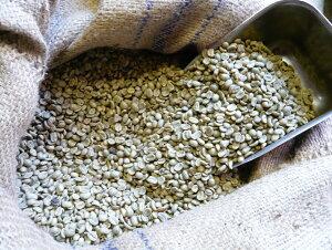 アラビカコーヒー生豆 メキシコ アルツア Mexco Altura 200g 【5000円以上お買い物 送料無料 】 クラシカルコーヒーロースター