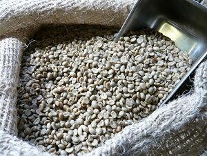 アラビカコーヒー生豆 タンザニアAA Tanzania AA 200g 【5000円以上お買い物 送料無料 】 クラシカルコーヒーロースター