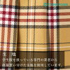 Adjuster student uniform high school girl Junior High School Senior High School pleated skirt AIKGT5441-3 made in school skirt [beige system checked pattern] Japan