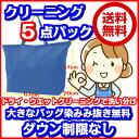 5点衣類クリーニング東北・関東・中部・関西宅配【送料無料】大きなバッグ消臭・染み抜き無料120cm以下の子供服が3枚で大人1点分(2セッ…