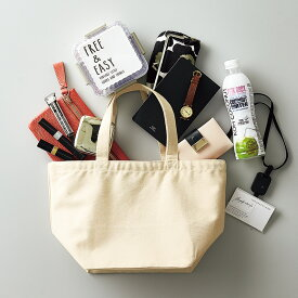 【メール便 送料無料】 バッグ レディース バッグインバッグ キャンバス ランチバッグ エコバッグ ショッピングバッグ 小さめ ミニ 軽量 サブバッグ ママバッグ マザーズバッグ