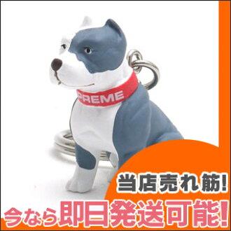 最高的比特犬钥匙扣 (钥匙扣) Whitexgraa 278-000000-019 x