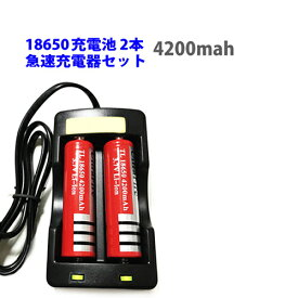 4200mah 18650 リチウムイオン 充電池 2本 + 急速充電器1個