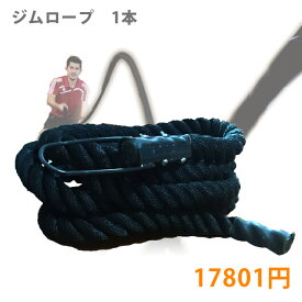 【送料無料】ジムロープ 1本 体幹 腹筋 インナーマッスル【SBS】