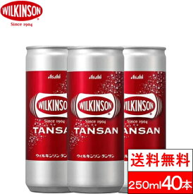 【全国配送対応】【送料無料】 ウィルキンソン タンサン 250ml 20缶×2箱(計40本)【ウィルキンソン】炭酸水 ソーダ