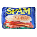 毛布 ひざかけ SPAM スパム ブランケット SPAM CAN 70×100cm アメリカ雑貨 アメリカン雑貨