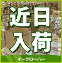 ◆4/20出荷OK!パナソニック 温水洗浄便座 ビューティ・トワレ【CH931SPF】パステルアイボリー (旧品番CH921SPF)