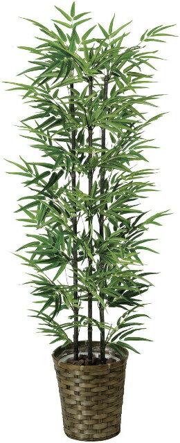 【送料無料】《竹・バンブー》《アートグリーン》《人工観葉植物》光触媒 光の楽園 黒竹1.35