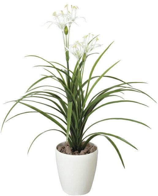 《アートグリーン》《人工観葉植物》光触媒 光の楽園 ユッカ花付