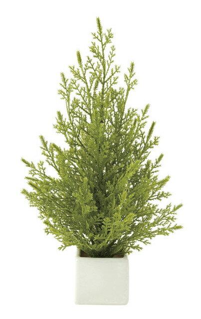 《アートグリーン》《人工観葉植物》光触媒 光の楽園 ミニゴ—ルドクレスト