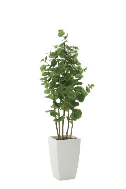 【送料無料】《アートグリーン》《人工観葉植物》光触媒 光の楽園 アーバンシーグレープ1.8