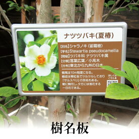 【樹名板】木の名札 花の名札 植物の名札 オーダーメード 公園 果樹園 庭園 庭木 植樹 記念樹
