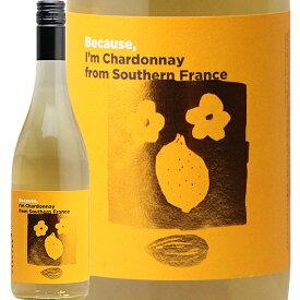 南フランス シャルドネ 2019 ビコーズ Southern France Chardonnay Because 白ワイン フランス フィラディス