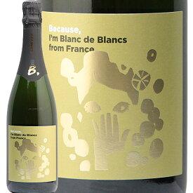 フランス ブラン ド ブラン NV ビコーズ France Blanc de Blancs Because スパークリングワイン フィラディス
