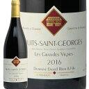 ニュイ サン ジョルジュ レ グラン ヴィーニョ 2016 ダニエル リオン Nuits St Georges Grandes Vignes Daniel Rion 赤ワイン ブルゴーニュ ピノ ノワール フィラディス フランス