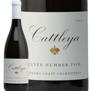 カトレア シャルドネ ソノマ コースト キュヴェ ナンバー ファイブ 2017 Cattleya Chardonnay Sonoma Coast Cuvee Number Five 白ワイン アメリカ カリフォルニア 新樽香 中川ワイン やや辛口