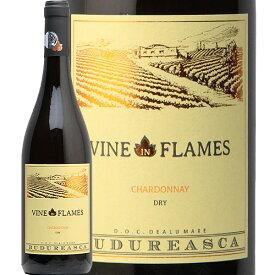ヴァイン イン フレイム シャルドネ 2019 ブドゥレアスカ Vine in Flames Pinot Noir Viile Budureasca 白ワイン ルーマニア 樽香 モトックス やや辛口