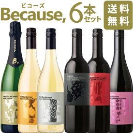 【送料無料】 ビコーズ 6本セット because 南フランス アメリカ カリフォルニア 赤ワイン 白ワイン スパークリング フィラディス