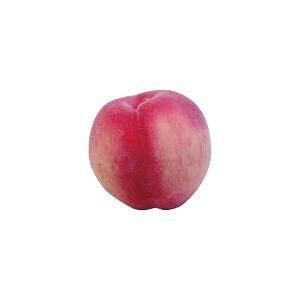 【代引き・同梱不可】 ニューホンコン造花 お供え 食品サンプル 桃ピーチ 2個セット 397505