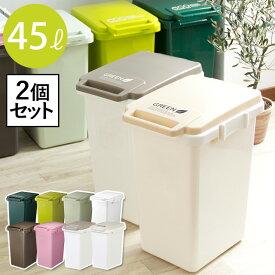 ゴミ箱 ふた付き おしゃれ 45リットル 分別 スリム キッチン リビング 屋外 ECOスタイル ゴミ箱 2個セット