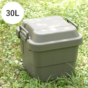 収納 ボックス フタ 付き トランクカーゴ Nash 30L 耐荷重100kg ふた付き おしゃれ 収納ケース カラーボックス 衣装ケース アウトドア ストレージボックス コンテナボックス ガーデニング 持ち