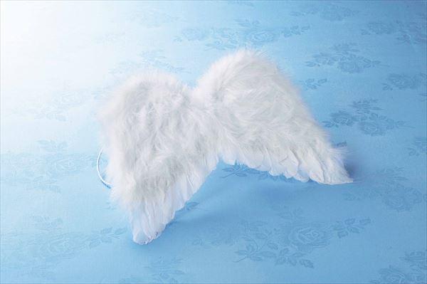 天使の翼 S