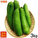 沖縄産へちま(ナーベーラー)3kg 【送料無料】 │沖縄野菜 食用ヘチマ