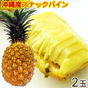 沖縄産スナックパイン 小玉 2個入(約1.2kg) |ボゴールパイン|
