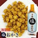 Okaki curry s1