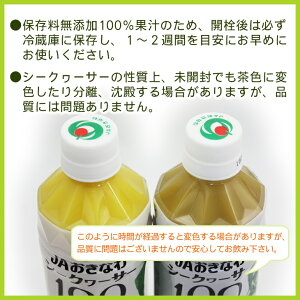 JAおきなわシークワーサー100(果汁100%)500ml×6本<送料無料>│青切りシークワーサージュース原液│