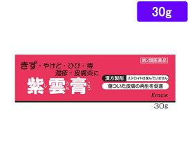 【第2類医薬品】薬)クラシエ/紫雲膏 30g【ココデカウ】