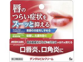 【第(2)類医薬品】薬)森下仁丹/メディケア デンタルピルクリーム 5g